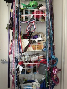 Organization is key in a city dog apartment