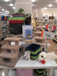 Selection of amazing products at Home Goods